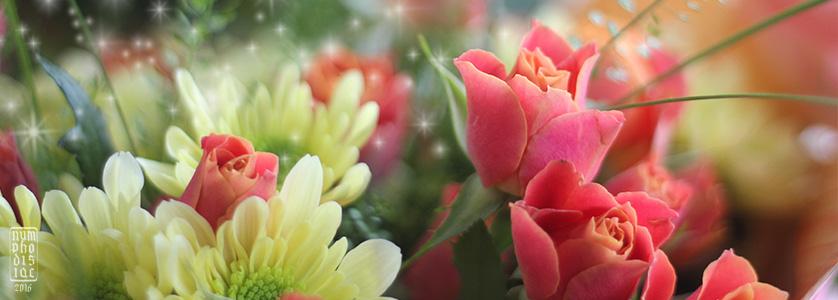 цветочный день
